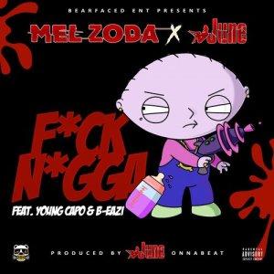Album Fuck Nigga from Mel Zoda