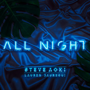 Listen to All Night song with lyrics from Steve Aoki