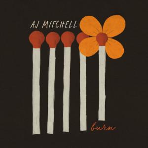 Album Burn from AJ Mitchell