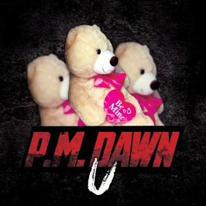 Album U from P.M. Dawn