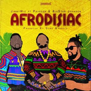 Album Afrodisiac (Explicit) from Payseen