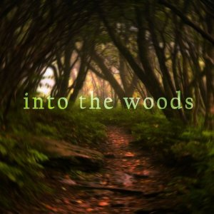 Native American Flute的專輯Into the Woods