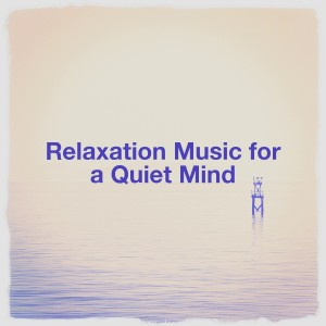 Sounds of Nature White Noise for Mindfulness Meditation and Relaxation的專輯Relaxation Music for a Quiet Mind