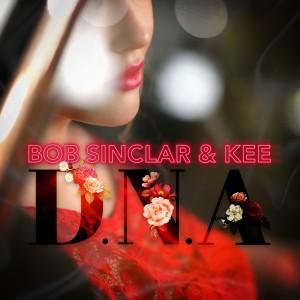 Album D.N.A from Bob Sinclar
