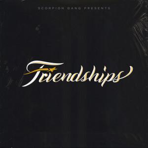 Album FRIENDSHIPS from Summer Cem