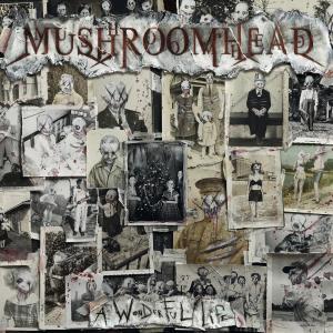 Album A Wonderful Life (Explicit) from Mushroomhead