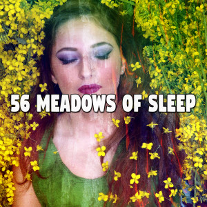Monarch Baby Lullaby Institute的專輯56 Meadows of Sle - EP
