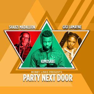 Album Party Next Door from ShabZi Madallion
