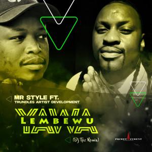 Listen to Yawa Lembewu (DJ Tpz Remix) song with lyrics from Mr Style