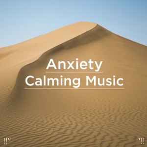 Nature Sounds Nature Music的專輯Anxiety Calming Music