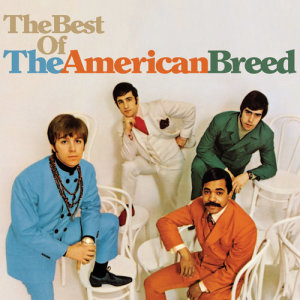 Album The Best Of The American Breed from The American Breed