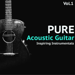 Pure Acoustic Guitar, Vol. 1