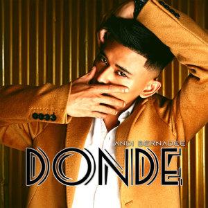 Album Donde from Andi Bernadee