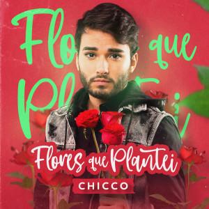 Album Flores que Plantei from Chicco