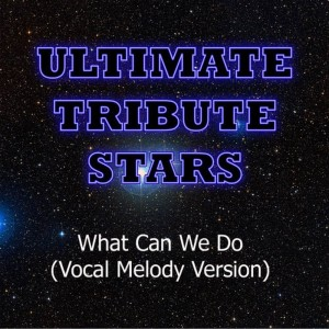 Ultimate Tribute Stars的專輯Tiësto feat. Anastacia - What Can We Do (Vocal Melody Version)