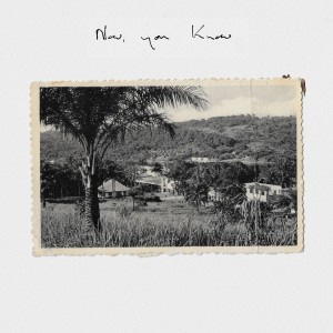Album Now, You Know from Rosie Lowe