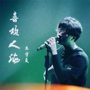 王宇良的專輯喜歡人海