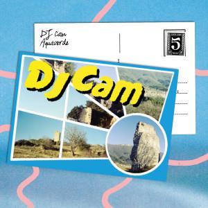Album Aquaverde from DJ Cam