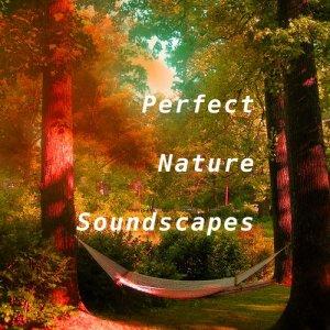 Perfect Nature Soundscapes