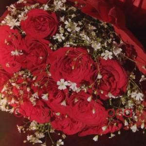 Album O Amor E a Rosa from Silvio Rodríguez