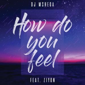 Album How Do You Feel from DJ Mshega