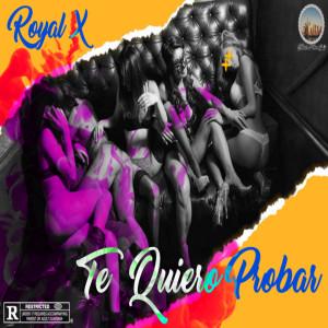 Album Te Quiero Probar from Royal X