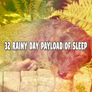 Album 32 Rainy Day Payload of Sleep from Rain Sounds & White Noise