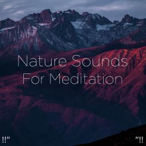 "Nature Sounds Nature Music的專輯!!"" Nature Sounds For Meditation ""!!"