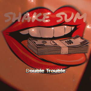 Album Shake Sum from Double Trouble