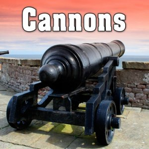 Sound Ideas的專輯Cannons Sound Effects
