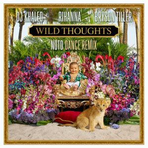 Rihanna的專輯Wild Thoughts (NOTD Dance Remix)