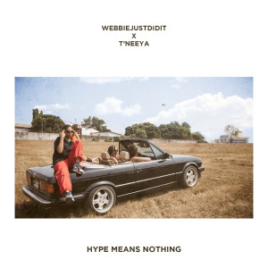 Album Hype Means Nothing from Webbiejustdidit