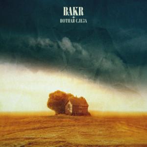 Album Нотная слеза from Bakr