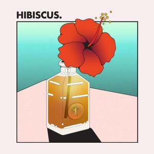 อัลบัม HIBISCUS. ศิลปิน Temp.