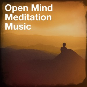 Sounds of Nature White Noise for Mindfulness Meditation and Relaxation的專輯Open Mind Meditation Music