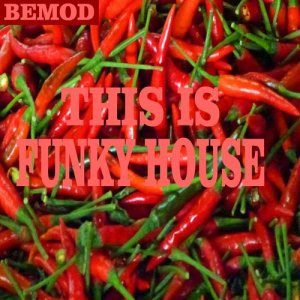 Album This Is Funky House from Various Artists