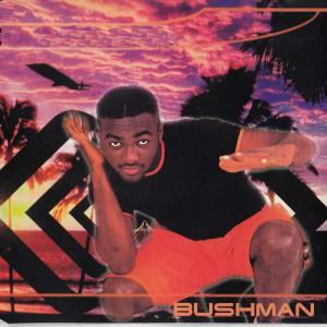 Album No 1 Else from Bushman