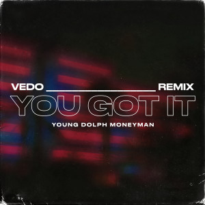 Album You Got It (Remix) from VEDO