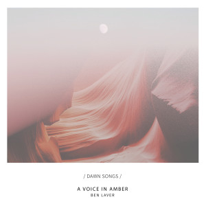 Album A Voice in Amber from Ben Laver