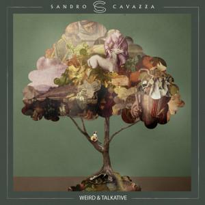 Album Weird & Talkative from Sandro Cavazza