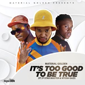 Album Its Too Good To Be True from Material Golden