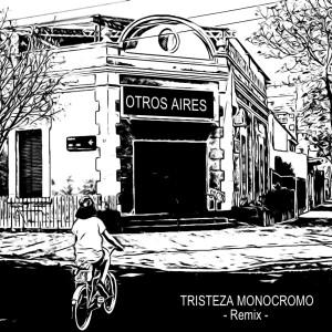 Album Tristeza Monocromo (Remix) from Otros Aires