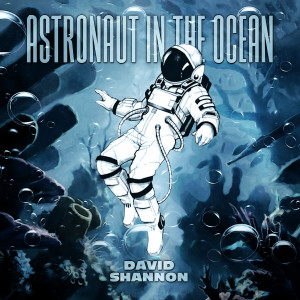 Astronaut In The Ocean dari David Shannon