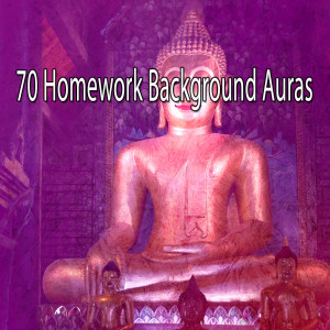 Album 70 Homework Background Auras from Zen Meditation and Natural White Noise and New Age Deep Massage
