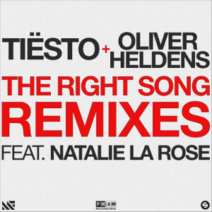 Album The Right Song from Tiësto