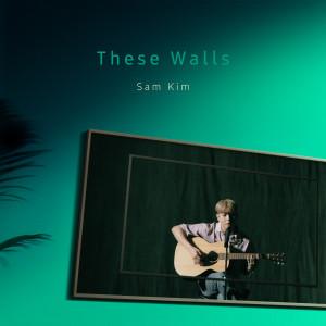 SAM KIM的專輯These Walls