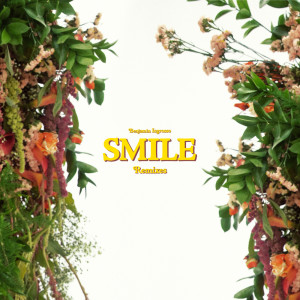 Album Smile (Remixes) from Benjamin Ingrosso