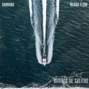 Album Burros de Salitre from Farruko