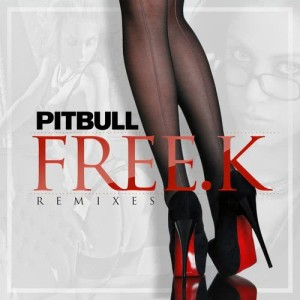 Listen to FREE.K (Junior Sanchez Remix) song with lyrics from Pitbull