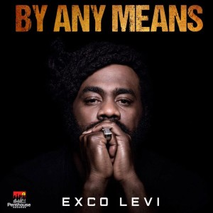 Album By Any Means from Exco Levi